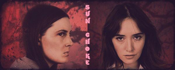 Sun Choke banner