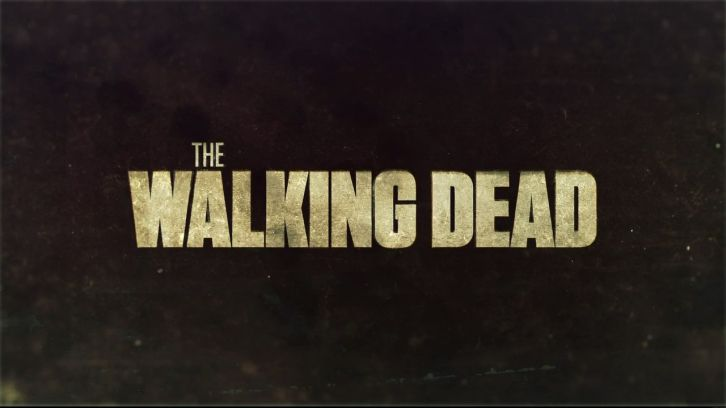 The Walking Dead TWD-Banner